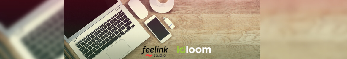 partners with Feelink